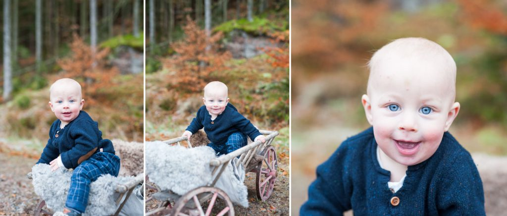evelinas-foto-alfred-valter-skogen-torsgarden-fotografering-2jpg