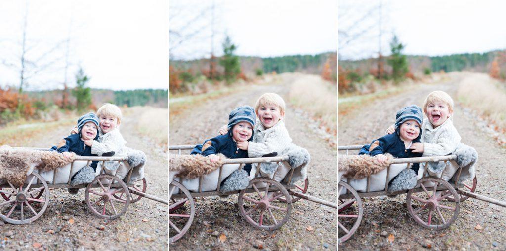 evelinas-foto-alfred-valter-skogen-torsgarden-fotografering